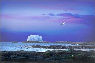 Bass Rock Blue Dusk