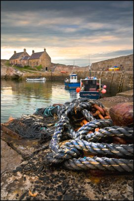 Harbour Cottages