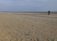 Beach Jogger, St Andrews