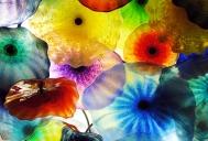 26. Glass Flowers
