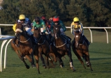 29 Taking the Corner at Musselburgh Races