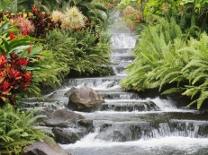 30 - Water Feature