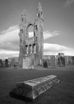40 St Andrews Abbey