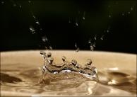56 - Splash